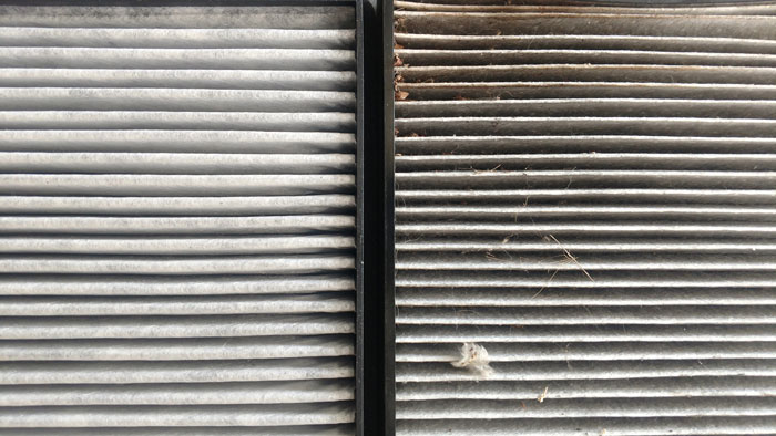 cabin-filter-replacement